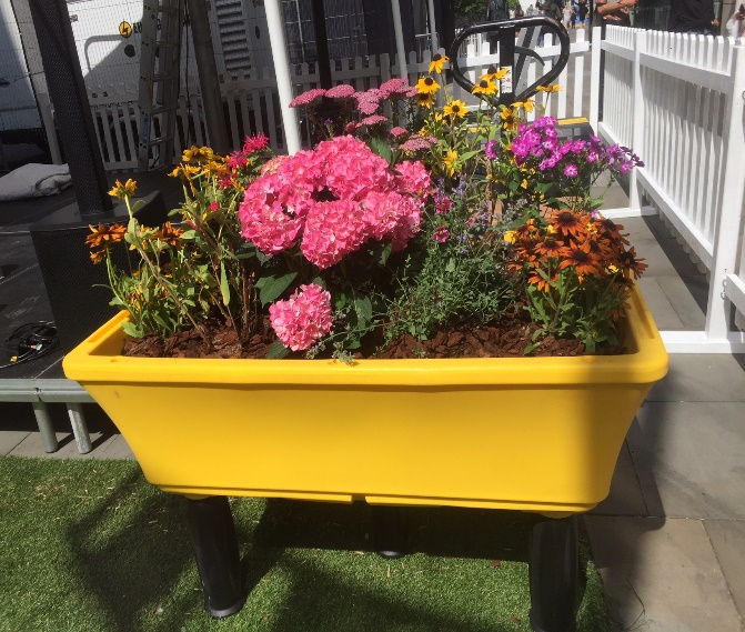 raised planter Manchester show